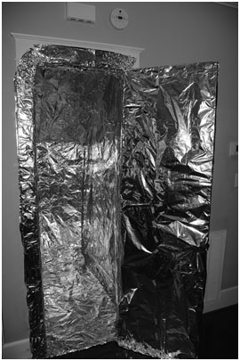 Faraday Cage Concept Scaled Up